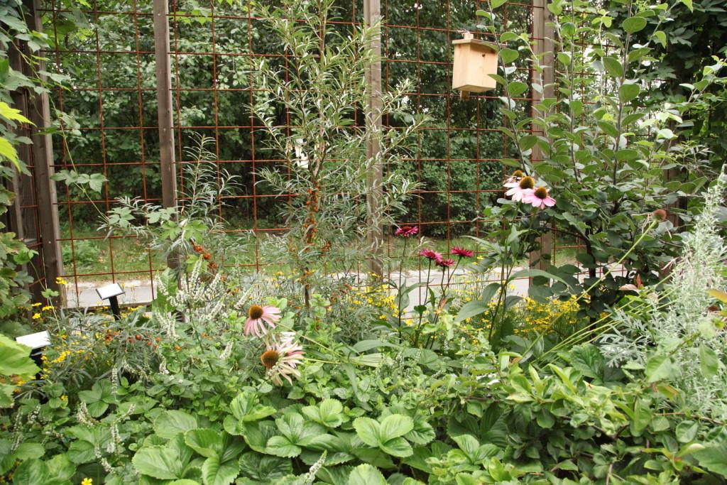 Berusande trädgård Spritmuseum